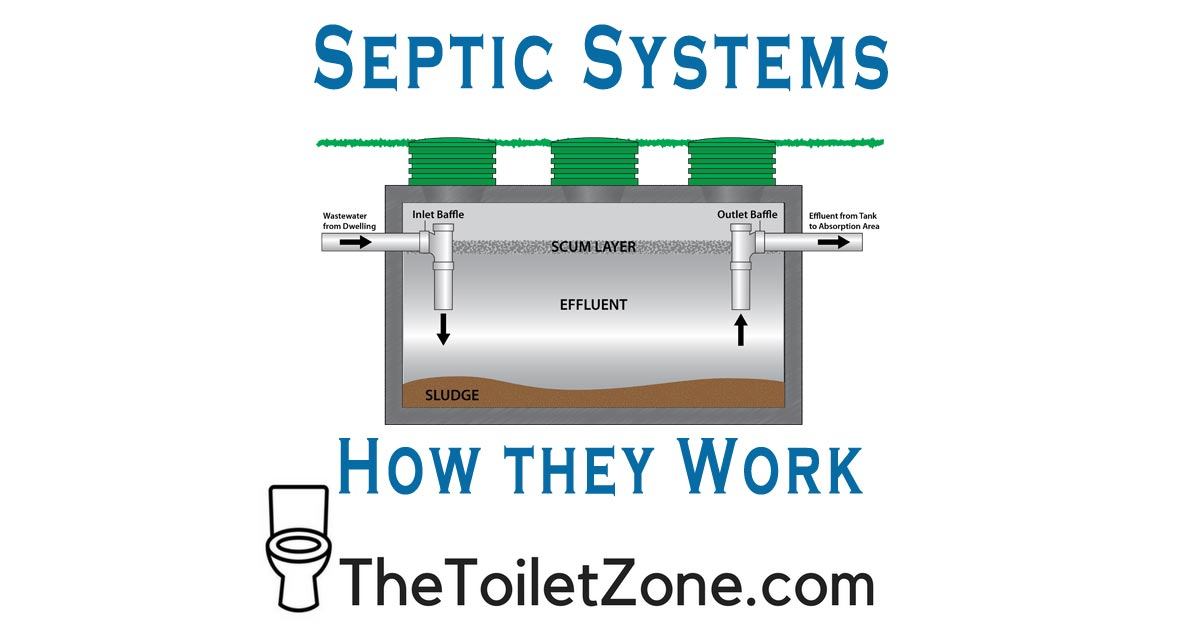 Septic System Basic Explanation