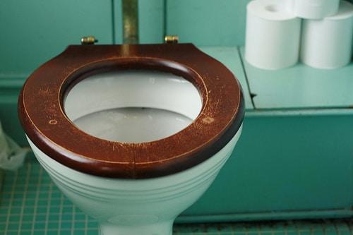 Remarkable 7 Best Wooden Toilet Seats Reviews 2019 Inzonedesignstudio Interior Chair Design Inzonedesignstudiocom