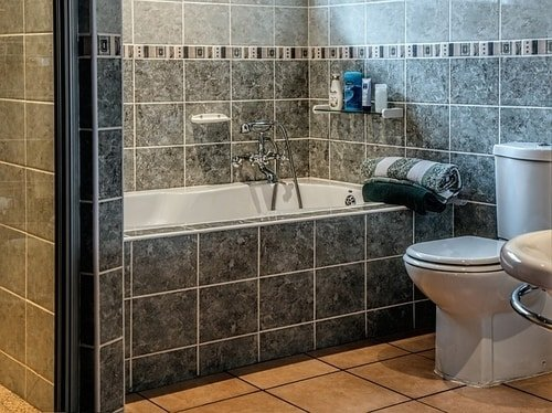 What flush system do you use at home