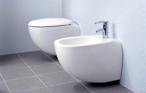 bidet next to toilet