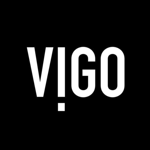 Vigo Industries Company Logo
