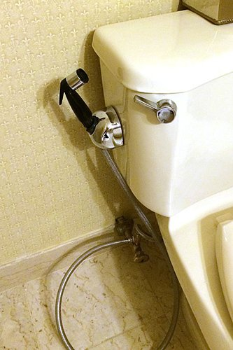 Bidet beside the toilet