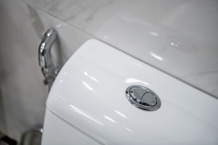 What Does Dual Flush Toilet Mean
