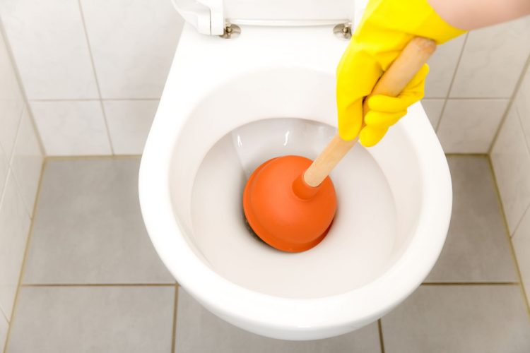Why Do Some Toilets Clog Easily?