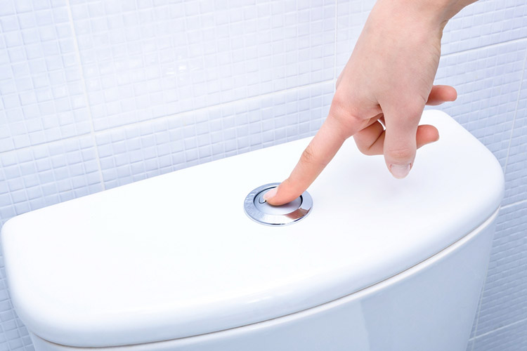 flushing-the-toilet