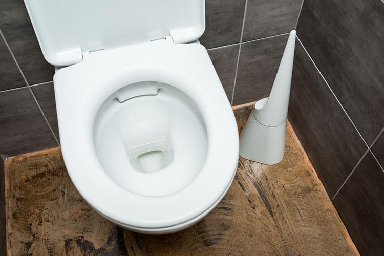 round toilet bowl