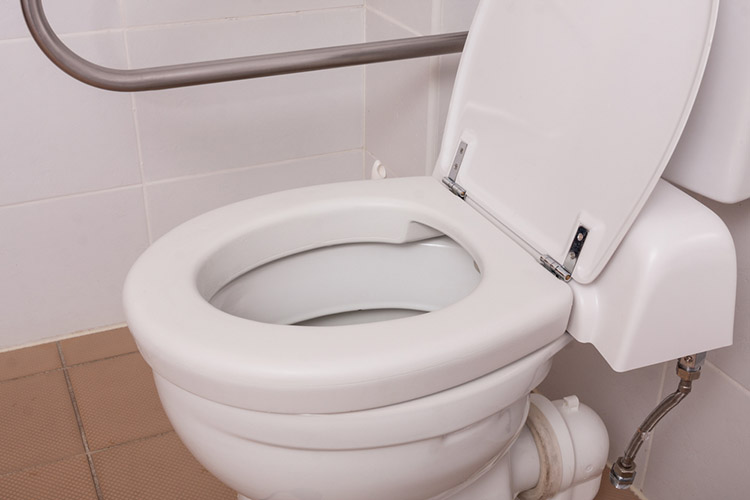 toilet constructed for people with disabilities